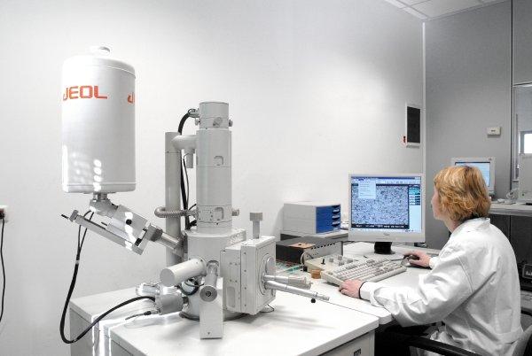 SEM: Scanning Electron Microscope